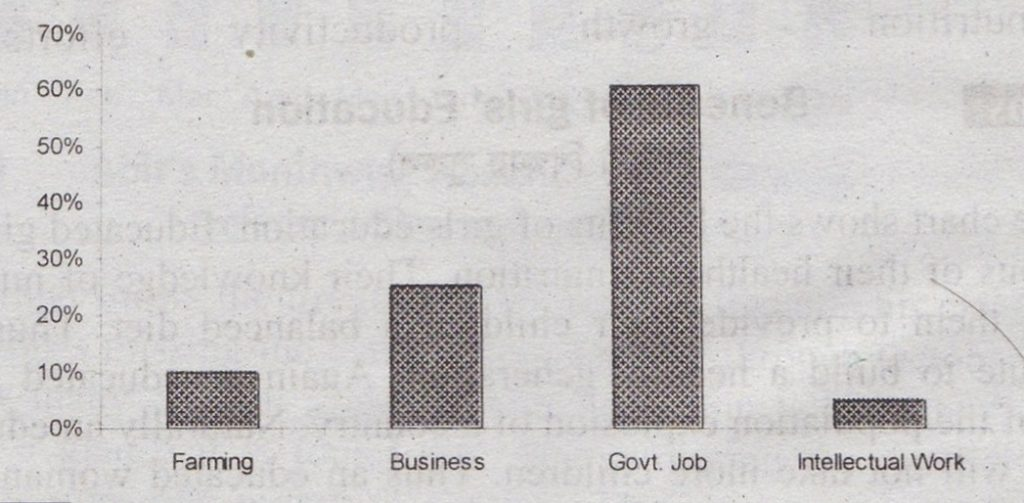 Describing the Graph of Choice of Profession by Educated