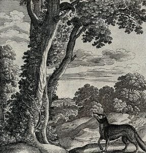Story on Cunning Fox and A Foolish Crow
